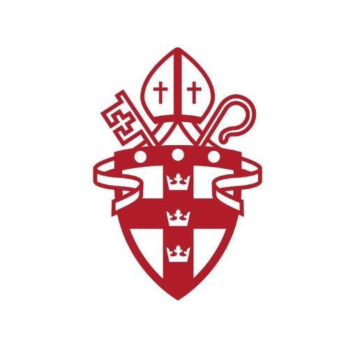 Diopa logo